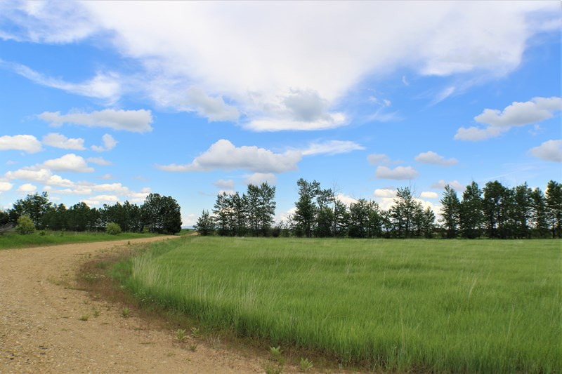 Lot 38 Buttercup Drive, Roberts, MONTANA 59070, ,For Sale,Buttercup Drive,111943